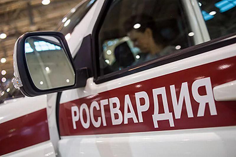 Росгвардию привлекут к защите медиков скорой помощи