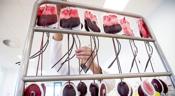 Службу переливания крови планируют подчинить федералам из-за накопившихся проблем в регионах