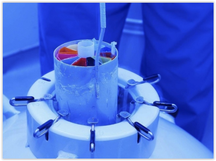 Криоконсервацию эмбрионов при ЭКО могут внести в ОМС