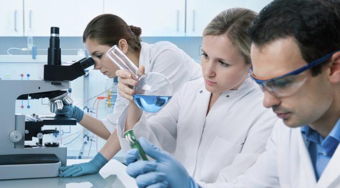 Программа по регенеративной медицине