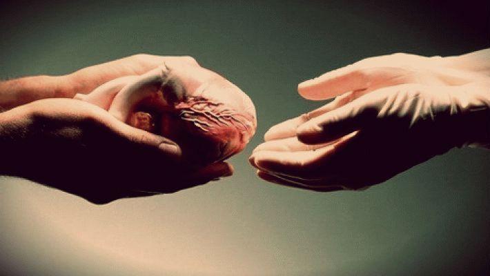 Новый закон о трансплантации: спасти жизни людей и защитить права доноров