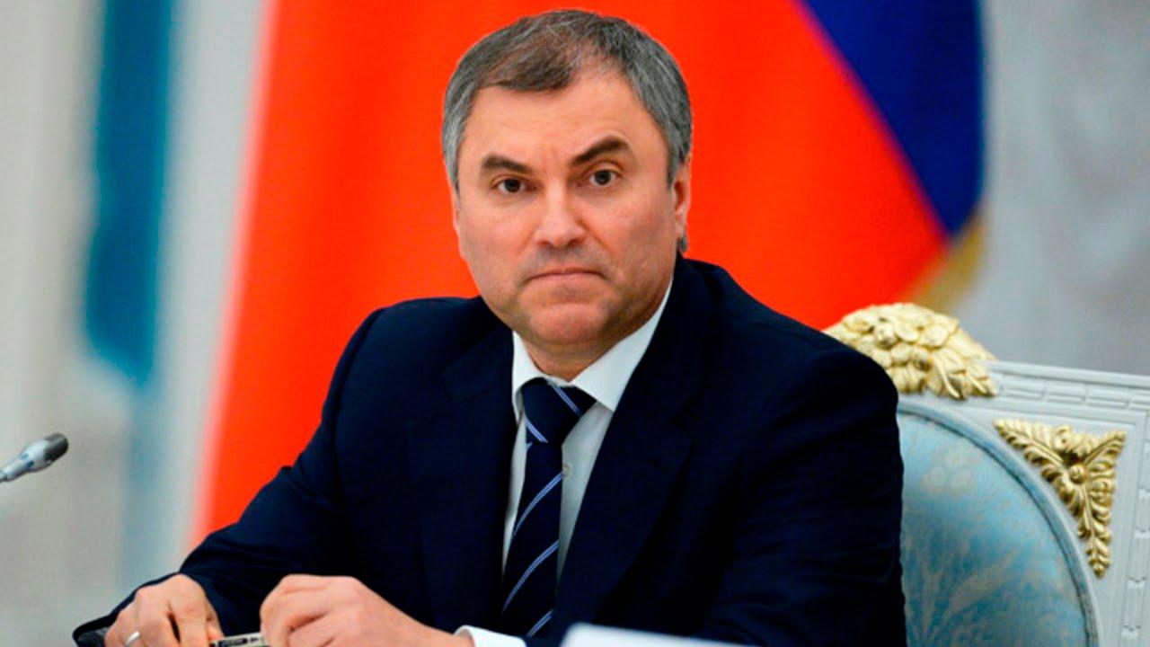 Володин обвинил Минздрав в плохом импортозамещении лекарств