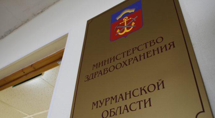 В Мурманском правительстве отчитались о положительных изменениях после обращения Стариковой к Путину