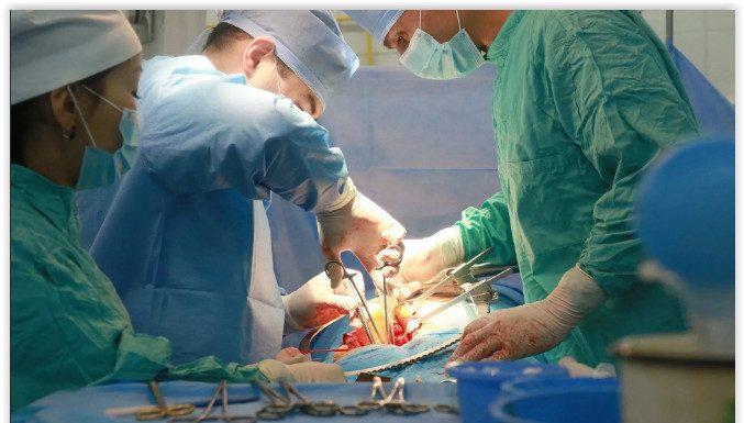 Хирурги Боткинской больницы планируют проводить до 130 трансплантаций в год