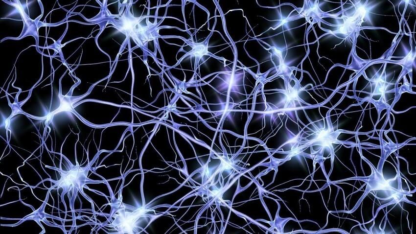 В России создали нейросеть для выявления метастазов у онкобольного