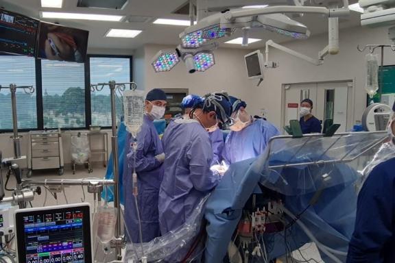 Красноярские врачи прошли стажировку в Австралии по коррекции врождённых пороков сердца