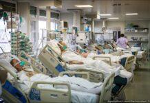 «Лучше превратить осаждающих ОРИТ в своих помощников, чем воевать с пациентским экстремизмом»
