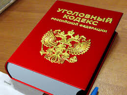 Новый законопроект о введении двух новых статей в УК РФ был опубликован ошибочно