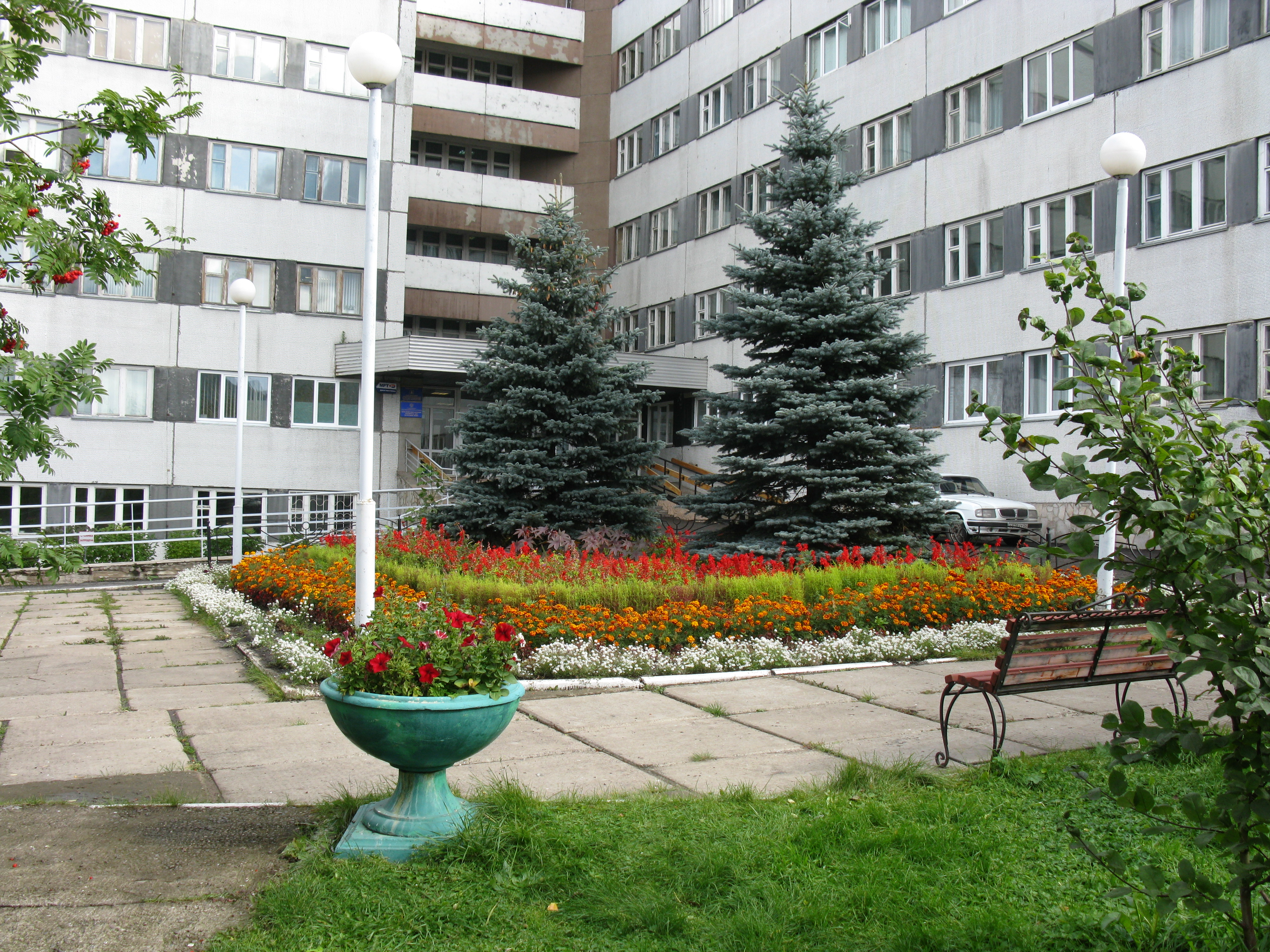 В Красноярске врио главврача госпиталя для ветеранов войн выпала из окна